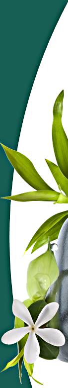 corenergie-bioenergie-fleurs-de-bach-huile-essentielle-yoga-Orsay-91